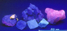 Циркон (желтый), микроклин (фиолетово-красный), кальцит (розовый), флюорит (3 кристалла на переднем плане)