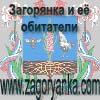 """""""Загорянка и её обитатели""""-полуофициальный сайт жителей поселка."""